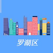 深圳罗湖注册公司
